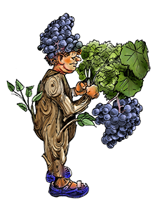 man bij wijnstok_small